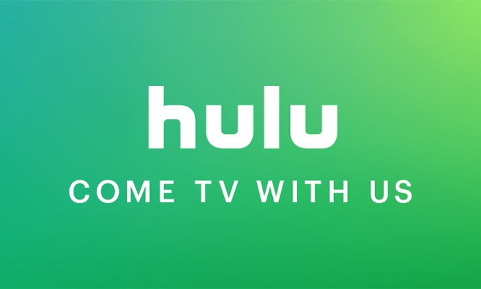 The Ultimate Decision: Netflix VS Hulu | Her Campus