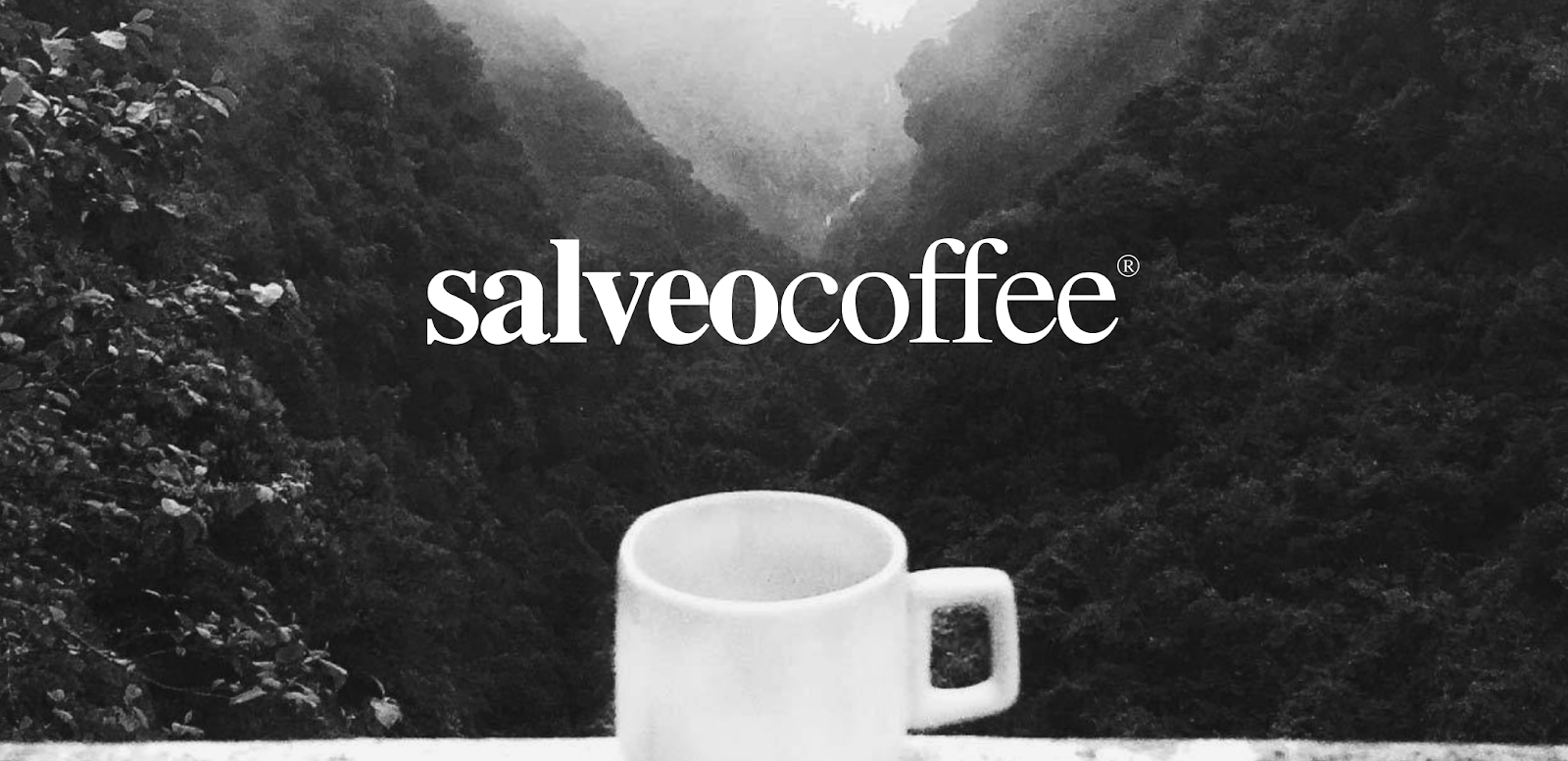 coffee brands looking for influencers