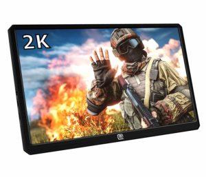 Portable Monitors Review