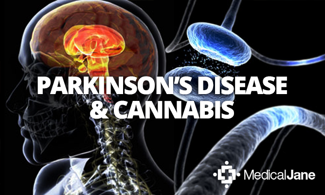 parkinsons and cannabis at maryjane