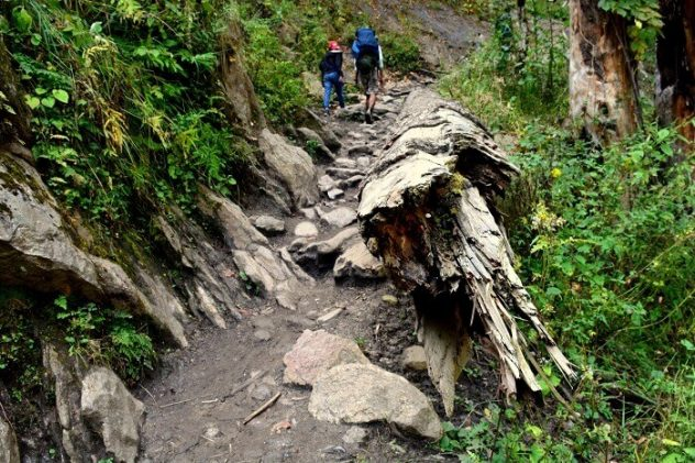 Kasol - Places to Visit - Things to Do - Best Time