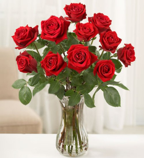 """hoa hồng đỏ còn giúp """"khai vận"""" cực kỳ hiệu quả"""