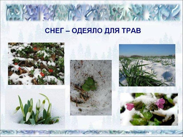 http://e-land66.ru/wp-content/uploads/2017/10/ab61574b5650.jpg