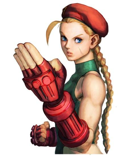 http://www.cosplayhouse.com/images/D/Street_Fighter_cammy_costume_ver_02-1-01%5B1%5D.jpg