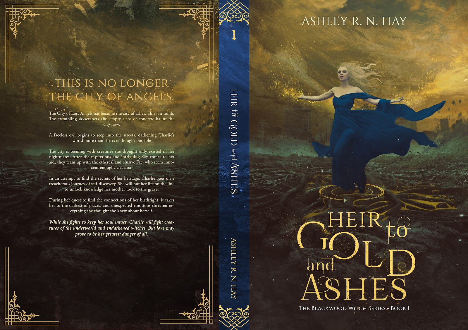 BOOK COVER -HEIR TO GOLD AND ASHES.jpg