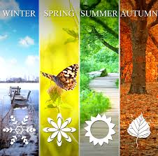 Image result for seasons