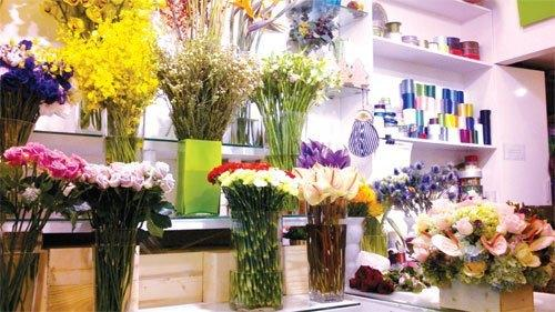 Đa dạng kiểu hoa, loài hoa