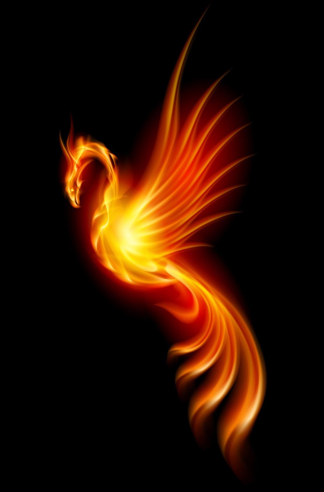 Ella J Phoenix.jpg