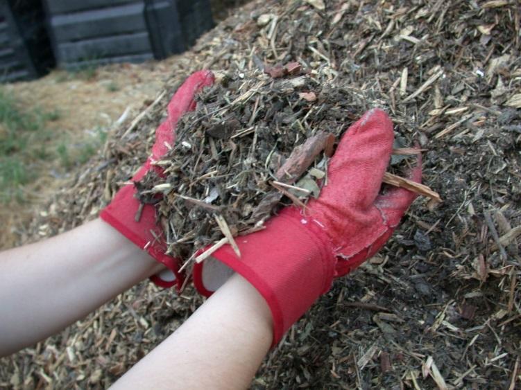 Подготовка ямы для посадки клематиса