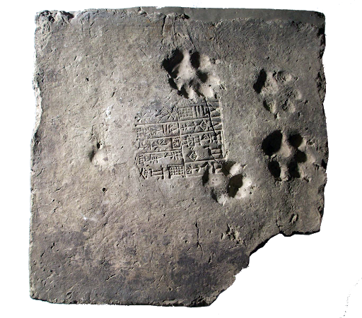 C:\Users\Admin2\Documents\abul alsoof\مدونة الموقع\سلام طه\اوريما\sinage educational\Pictures Penn\inscribed brick of Urnamma and it has the additional interest of the dog footprints on it. I believe the inscription is of building the walls of Ur.png