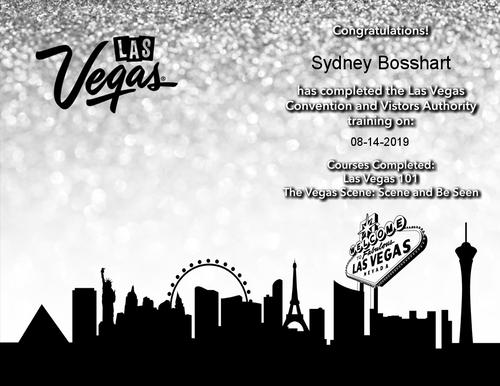 Vegas Insider .png
