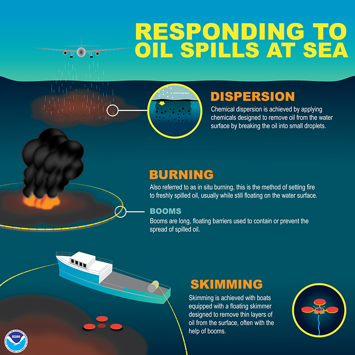 Graphic showing methods for responding to oil spills at sea. Plane applying chemical dispersants: Chemical dispersion is achieved by applying chemicals to remove oil from the water surface by breaking the oil into small droplets. Burning: Also referred to as in situ burning, this is the method of setting fire to freshly spilled oil, usually while still floating on the water surface. Booms: Booms are long floating barriers used to contain or prevent the spread of spilled oil. Skimming: Skimming is achieved with boats equipped with a floating skimmer designed to remove thin layers of oil from the surface, often with the help of booms.