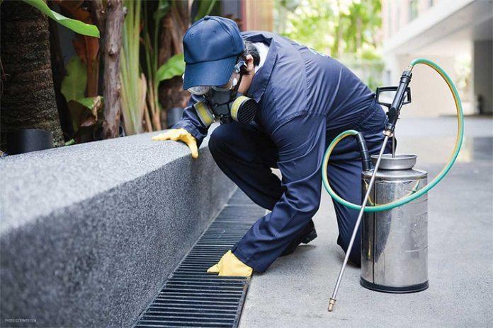 Kinh nghiệm lựa chọn công ty diệt côn trùng uy tín, chất lượng