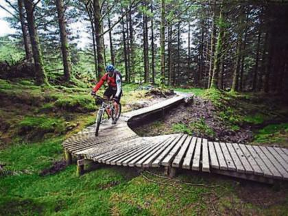 Image result for mountain biking ballyhoura