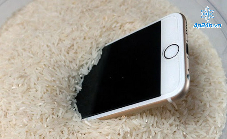 Đừng cố gắng làm khô iPhone bằng gạo