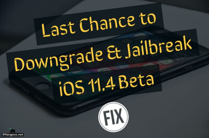 2014 SAFE WIPER : Jailbreaking iOS 11 4 beta 3 11 3 1-11 2