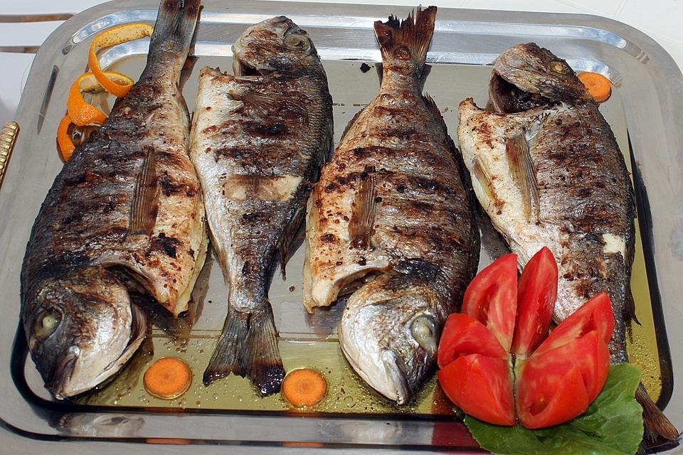Fish, Grilled Fish, Dinner, Dish, Grilling, Grill