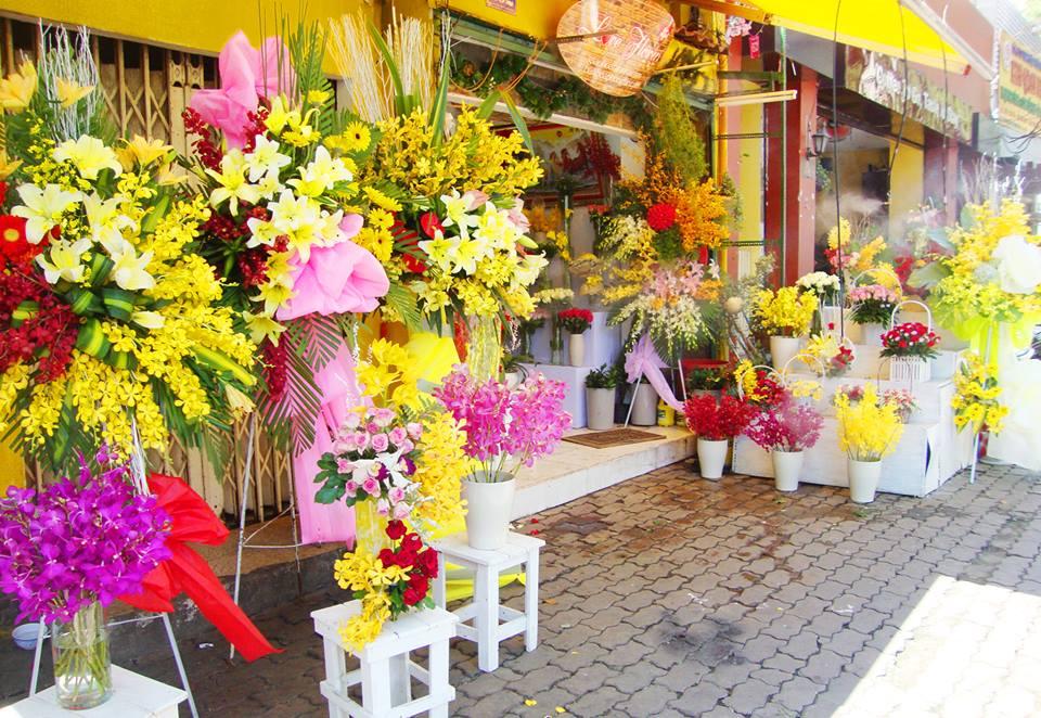fW4nZDXaTyyq4InbkcgWmZjaYbwncXGu Jsry8LVlFDZRmsHy7O4ZOn4yHa8SKXTjGVOGsxIuVgiiZa4Yohs7E0xPsdC98XGUJESpiKnAtt5976oM8ABaMaRGyPg3WZ6ES7O86mgpzRrW6C8Yw - Ý nghĩa của những loại hoa khai trương tại cửa hàng hoa tươi Sài Gòn