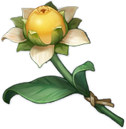 Hoa Ngọt