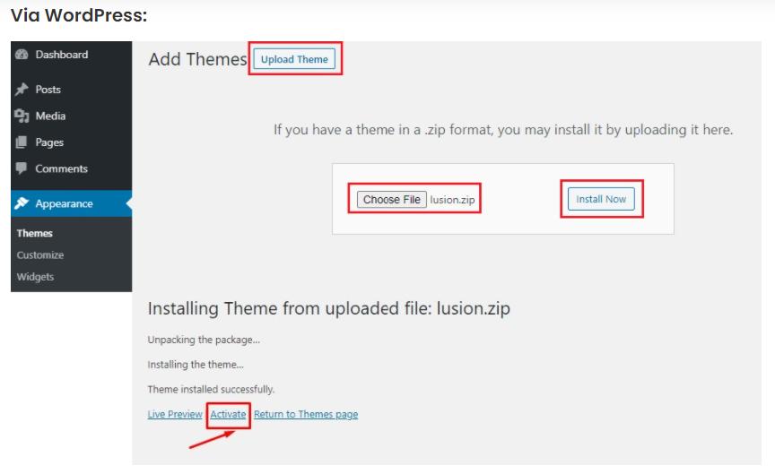 install Lusion wordpress