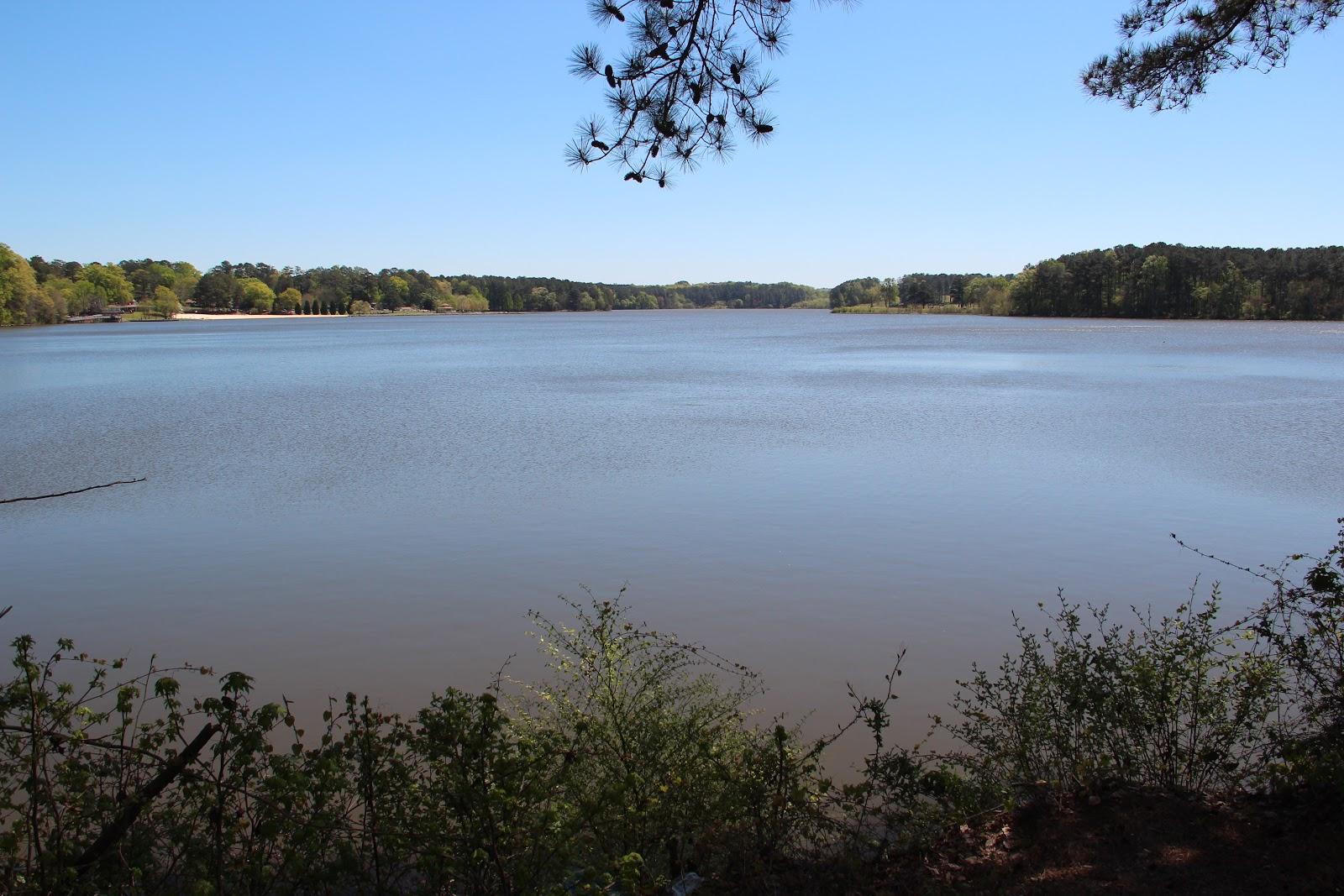 Calm pond against blue sky and foliage