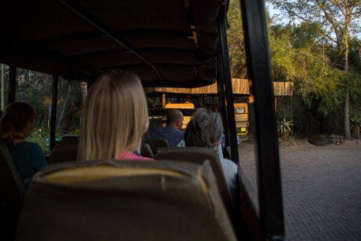 Game Drive no Kruger - Caminhão com bancos e aberto dos lados para realizar os game drives.