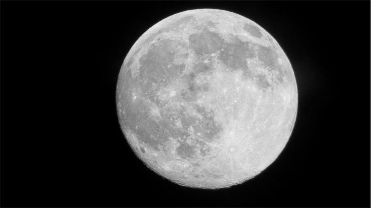 NF Buck Moon.jpg