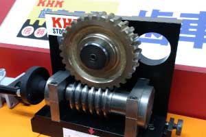 duplex worm gears