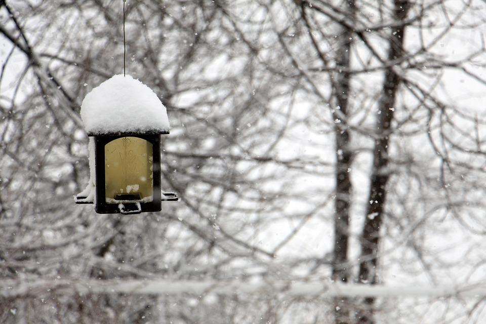 winter-1428270_960_720.jpg