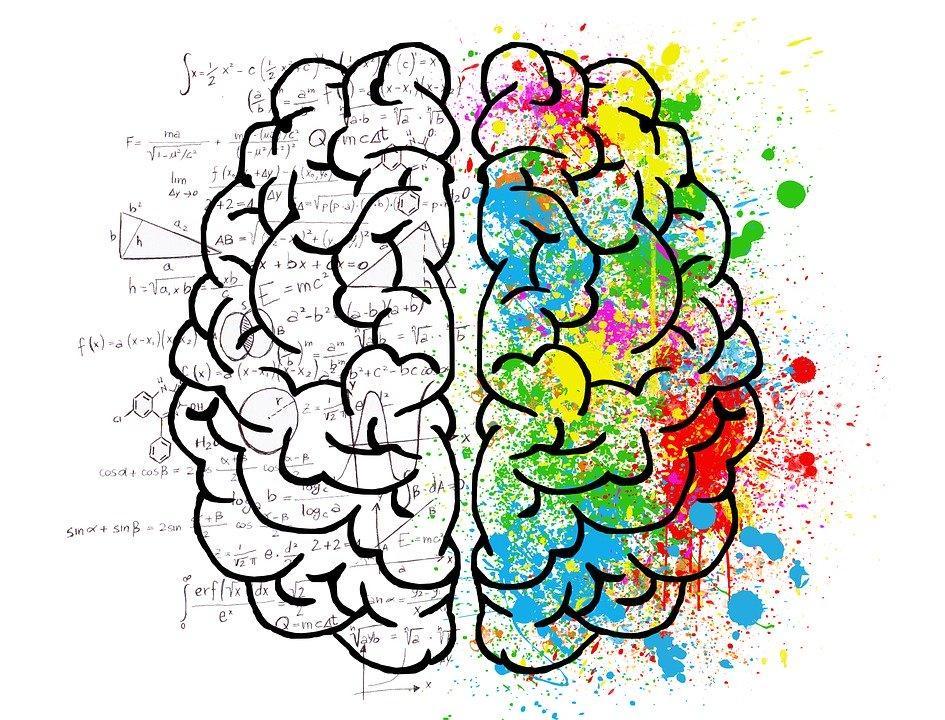 Brain, Mind, Psychology, Idea, Drawing