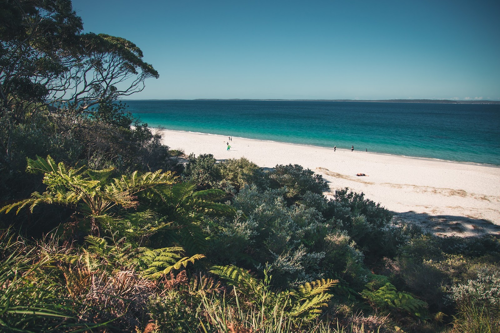 jervis bay secluded beach turquoise water green plants white sand australia