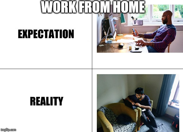 Work from home expectation vs reality meme