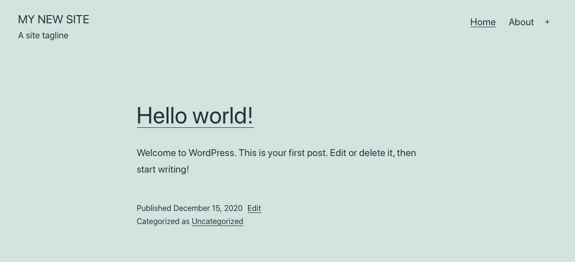 new wordpress website preview