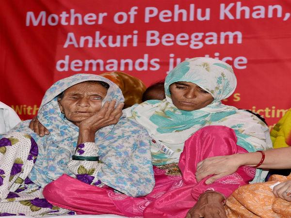 Image result for pehlu khans family