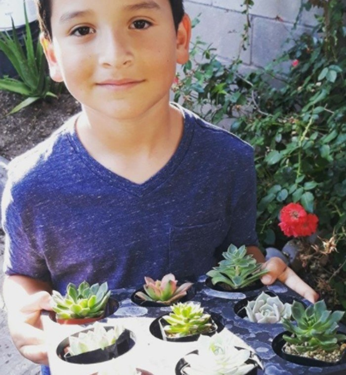 8-year-old boy starts a plant business to help his mother