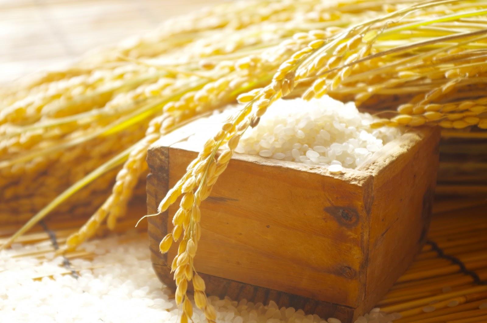 米粉を使ったショートブレッドの魅力(3つ程度)