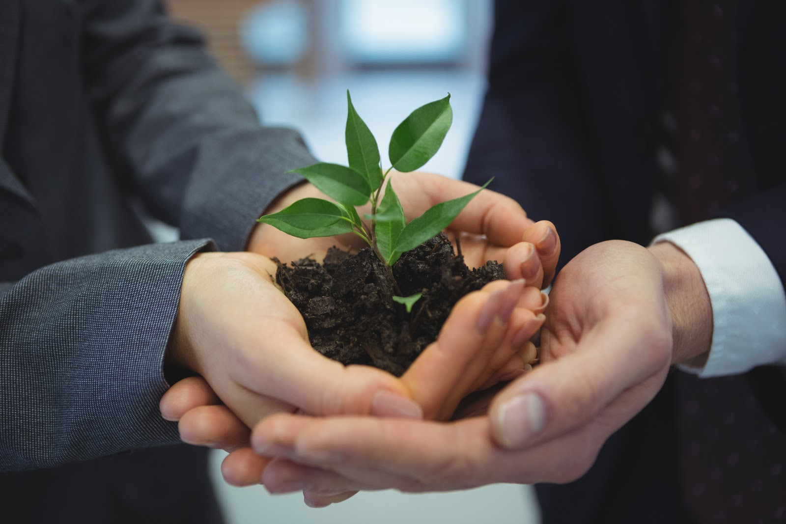 Imagem de uma mão feminina segurando terra com algumas folhas. Essa mão feminina está sendo segurada por um par de mãos masculina. Ambos estão trajando ternos, ilustrando o universo business e a importância da tecnologia ambiental.