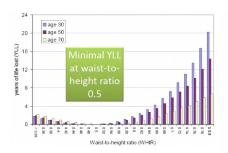 Image result for waist to height ratio longevity
