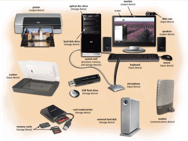 important output computer devices in accounting