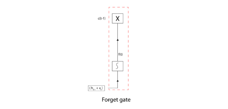 The image viewed the basic structure of the Forget Gate