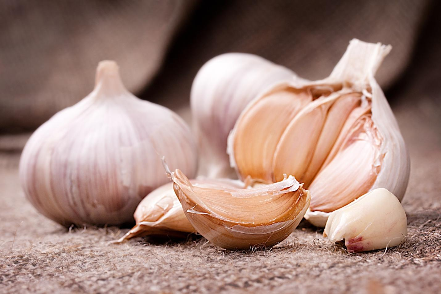 D:garlic 2.jpg