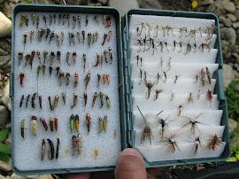 Кутията с мухи на Иво Балинов - Канада