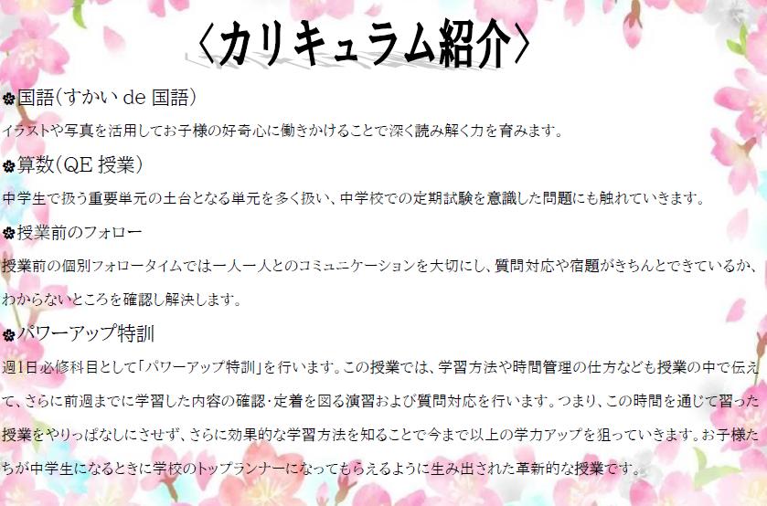 カリキュラム紹介.png