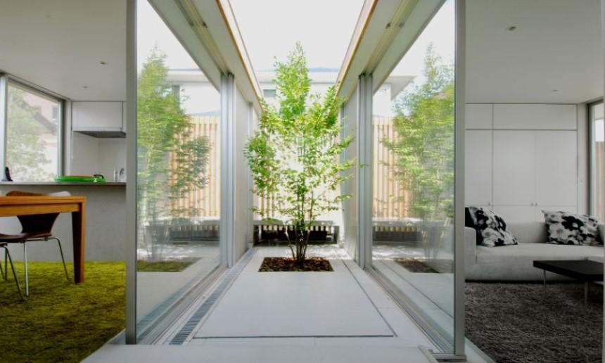 Thiết kế giếng trời kết hợp với cây xanh