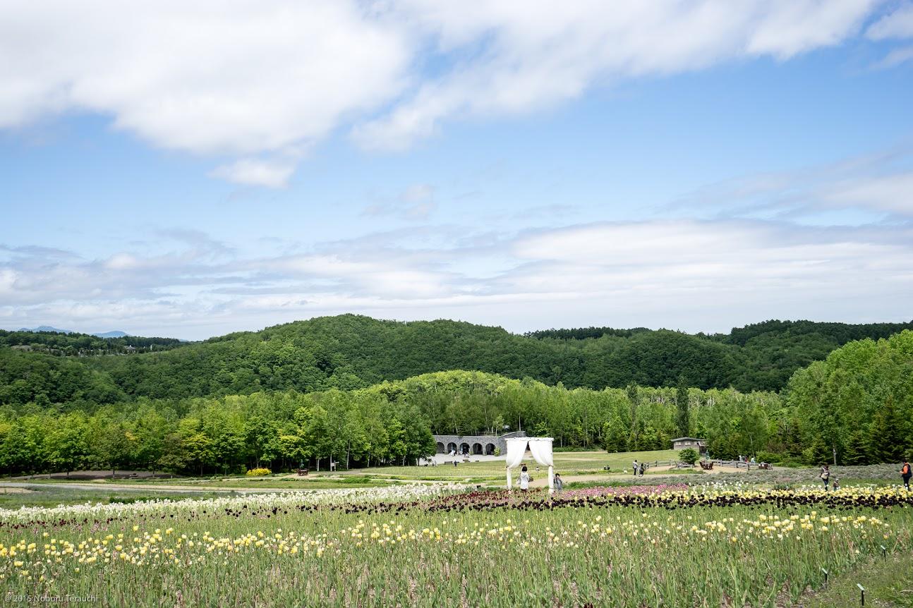 山のお花畑への白いゲート