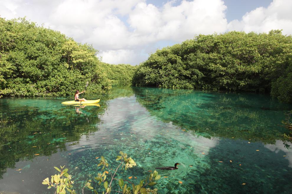 Cenote Manati.png