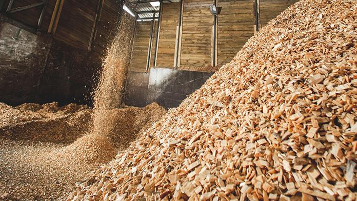 biomasa-energia-renovable