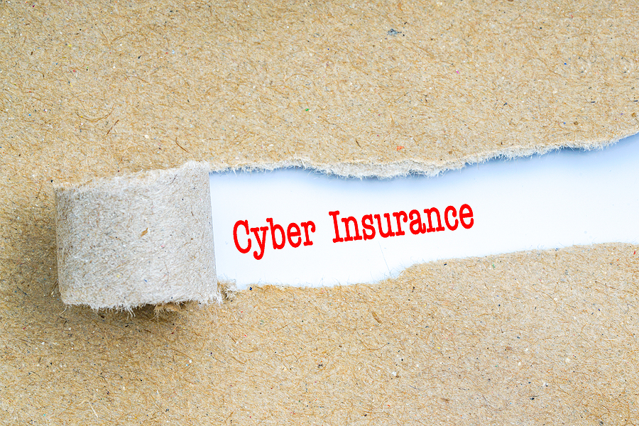 "Cardboard background with the middle section torn back to reveal ""Cyber Insurance"" in red letters."