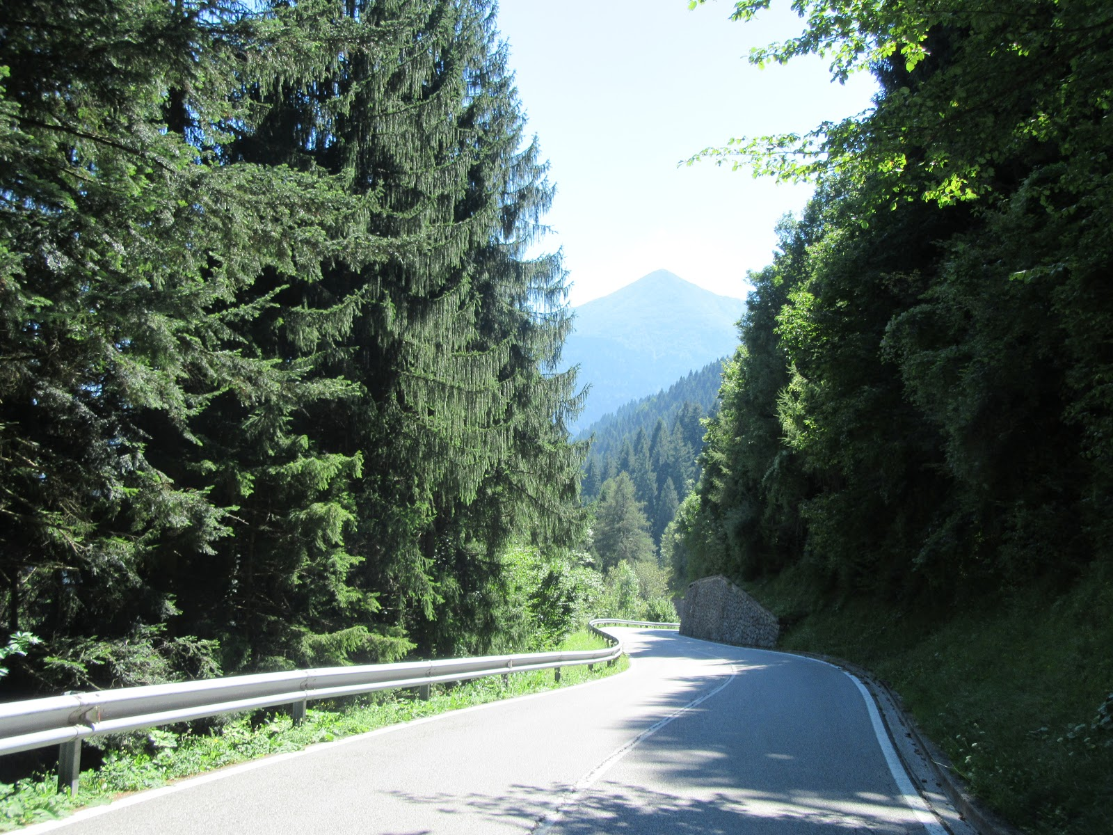 Cycling Cycling Monte Zoncolan from Sutrio - road with trees bordering it and mountains in background