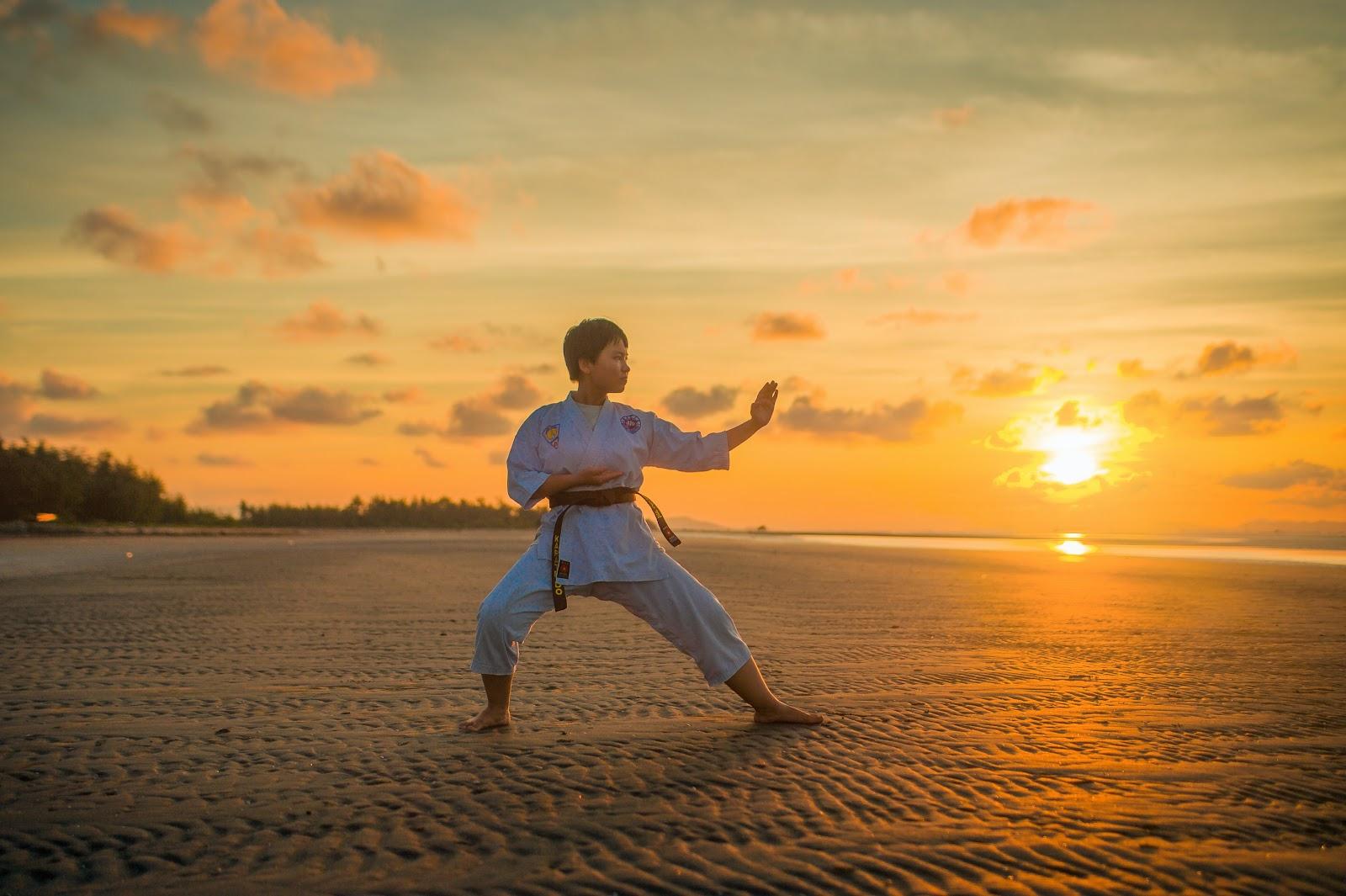 Karate Stances - Back Stance - Kokutsu Dachi